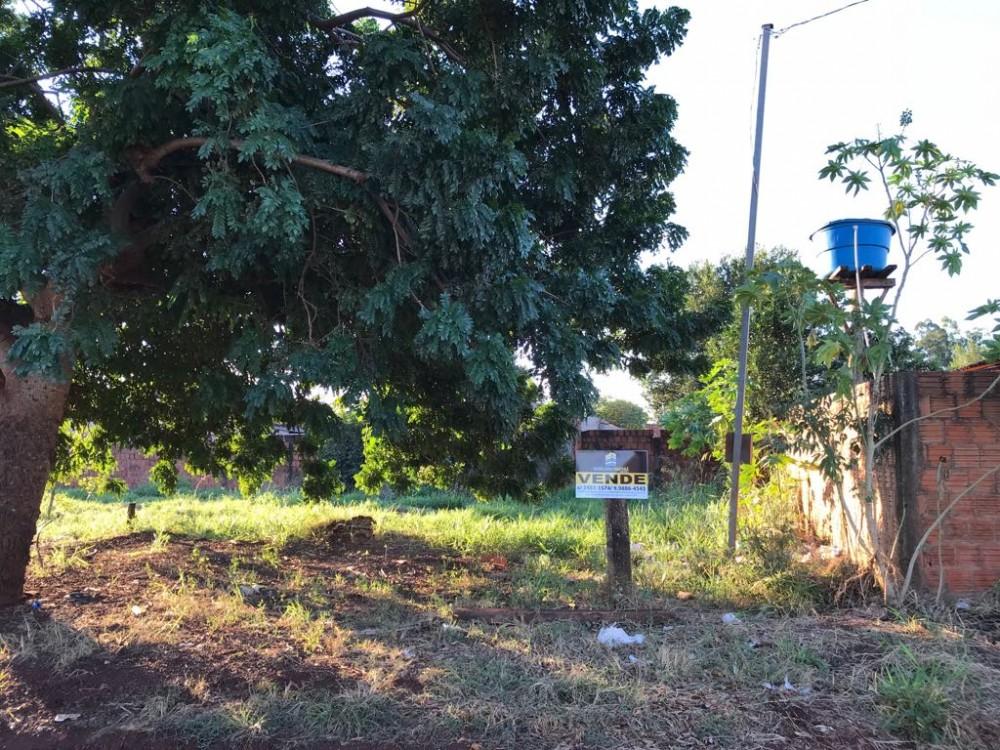 Terreno no jardim Santa Maria, no ASFALTO Ótima localização  Murado em L